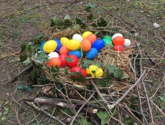 La chasse aux œufs de Pâques 2018